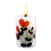 Musc : Bougie Naturelle Parfumée à l' Huile Essentielle (4,50 cm x 7,00 cm)