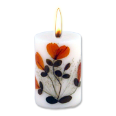 Citronnelle : Bougie Naturelle Parfumée à l' Huile Essentielle (4,50 cm x 7,00 cm)