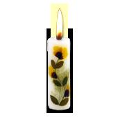 Rose : Bougie Naturelle Parfumée à l' Huile Essentielle (2,00 cm x 7,00 cm)