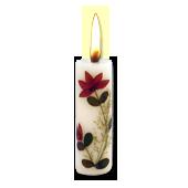 Opium : Bougie Naturelle Parfumée à l' Huile Essentielle (2,00 cm x 7,00 cm)