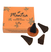 Lys : Encens Indien Mantra ~ Boîte de 10 Cônes + 1 Porte-Encens
