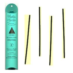 Cèdre : Bâtons de Plantes à Brûler ~ Étui de 10 Gros Bâtons