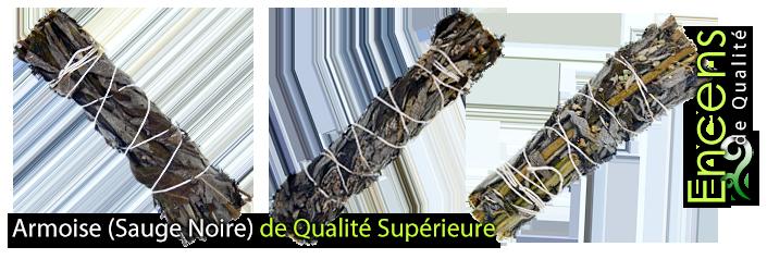 Armoise ( Sauge Noire ) 100% Naturelle